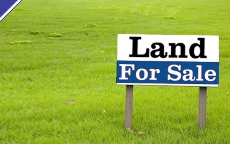 services-land